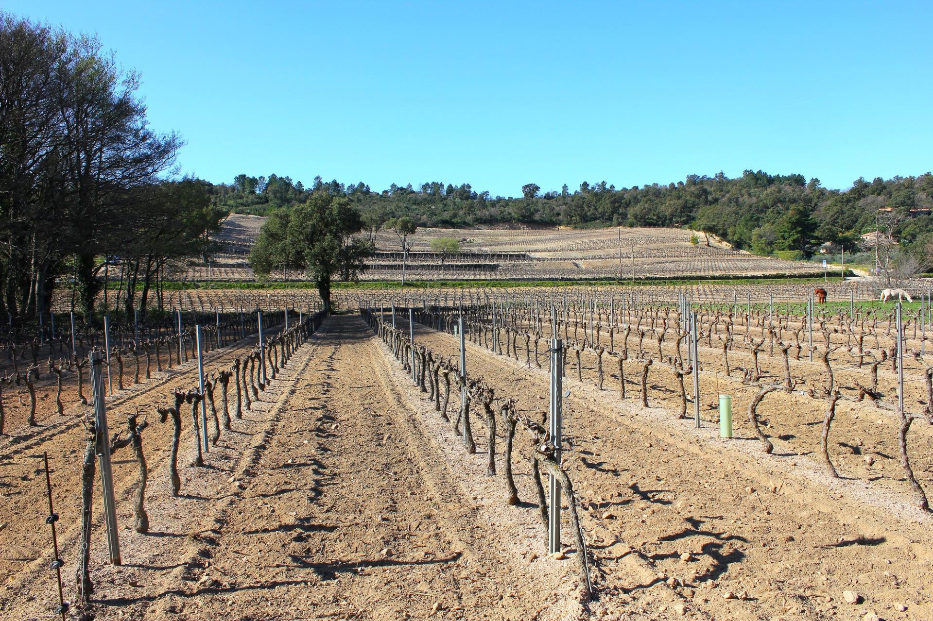 Préparation des sols avant ensemencement.